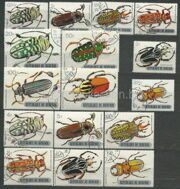 Beetles (insects)